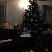 クリスマスツリー飾りました(人´∀`).☆.。.:*・゚